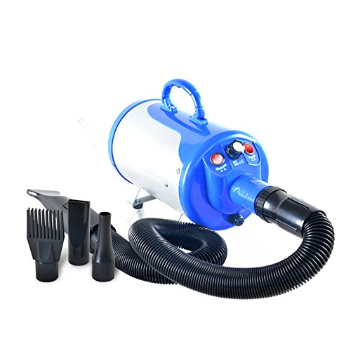 Gravitis 2800W Stepless Speed Grooming Blaster Blower