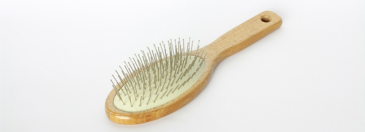 Hairbrush Cleaning