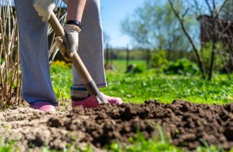 Our Top 10 Garden Digging Tools for Working the Soil