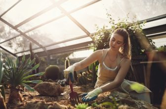 Our Top 5 Affordable Wilko Garden Tools