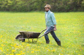 The Best Garden Wheelbarrow 2021 Make Light Work of Garden Tasks