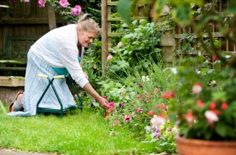 What Is a Garden Kneeler, and How Do I Use One