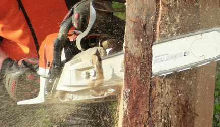 Best Chainsaw 2020 – Buyer's Guide