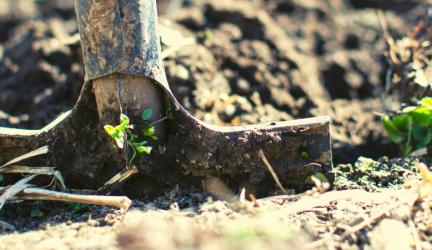 Best Garden Shredder 2020 – Buyer's Guide