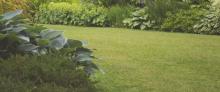 Best Lawnmower 2021 – Buyer's Guide