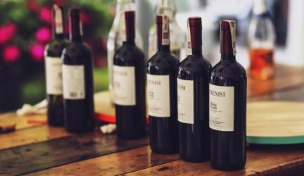 Best Wine Fridge 2020 – Buyer's Guide